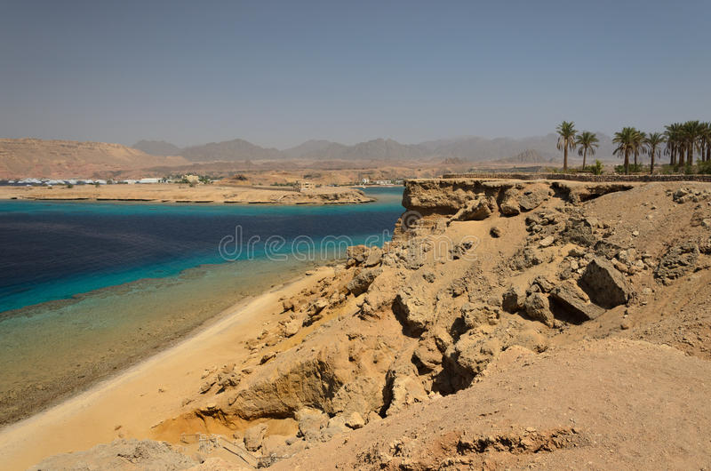 Kust i Egypten rött hav royaltyfria bilder