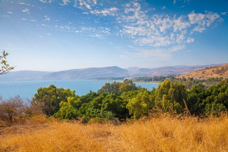 Kust i Tabgha, hav av Galilee, Israel royaltyfri bild