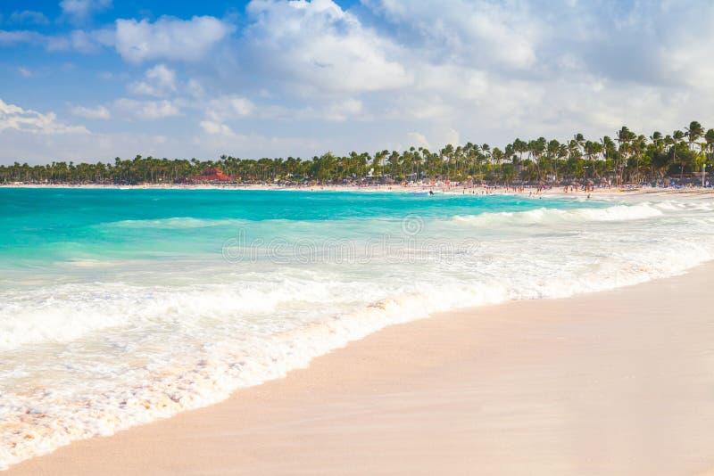 Kust- karibiskt landskap Sandig strand royaltyfri fotografi
