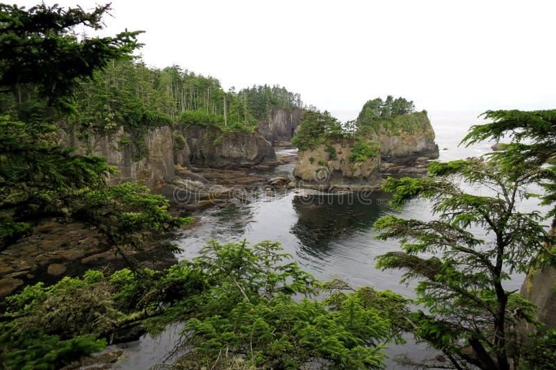 Kust- klippor i Washington State royaltyfri foto