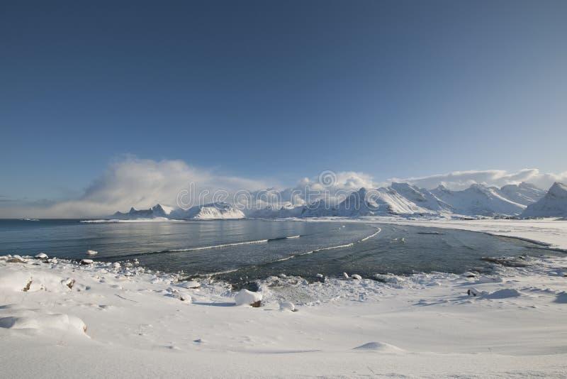 Kust- landskap av Moskensoy i den Loftofen skärgården Norge arkivbild