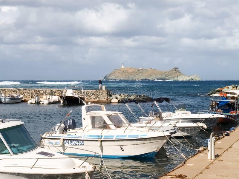 Kust- landskap och skog av Cap Corse arkivbild