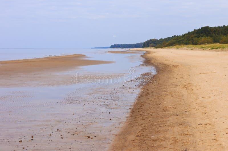 Kust- landskap på sen sommar fotografering för bildbyråer