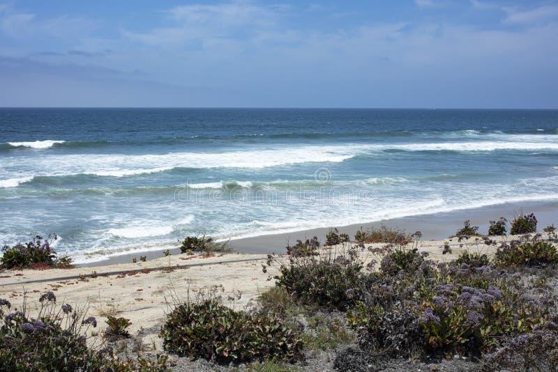 Kust- landskapsikt av havslavendel arkivbild