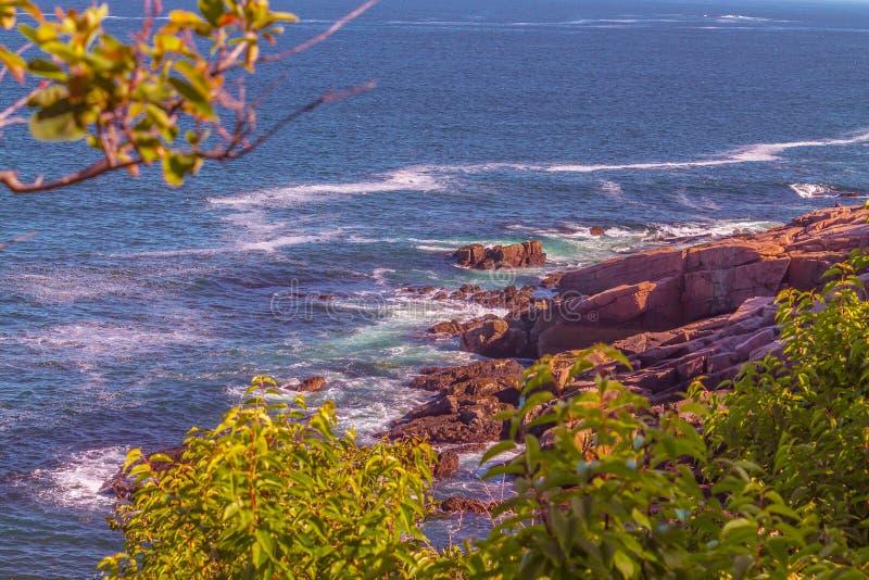 Kust- Maine i Acadianationalpark royaltyfri fotografi
