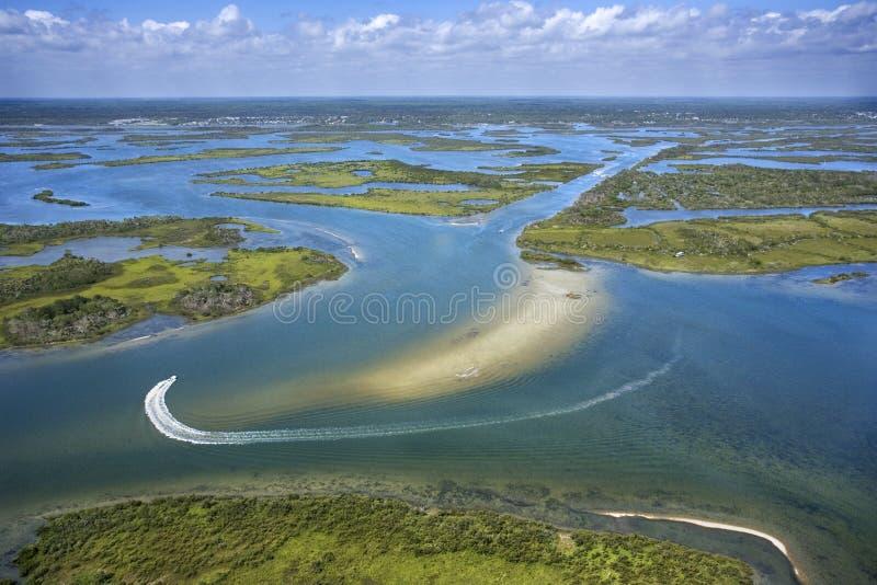kust- marshvåtmark royaltyfria bilder