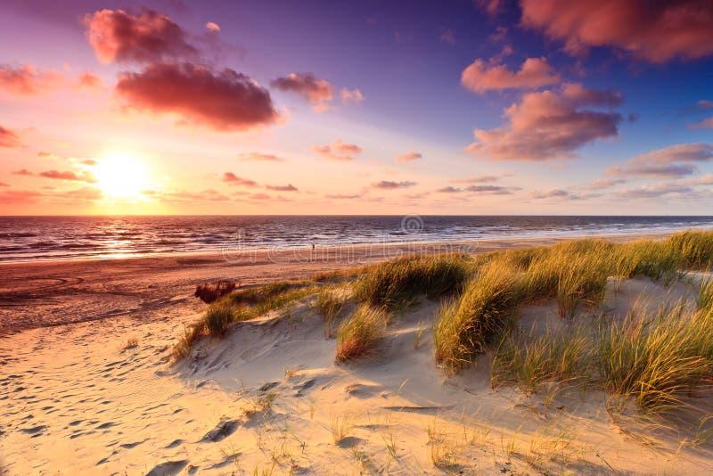 Kust met zandduinen bij zonsondergang stock foto's