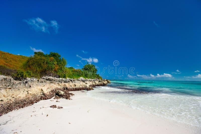 Kust på Bahamas arkivbild