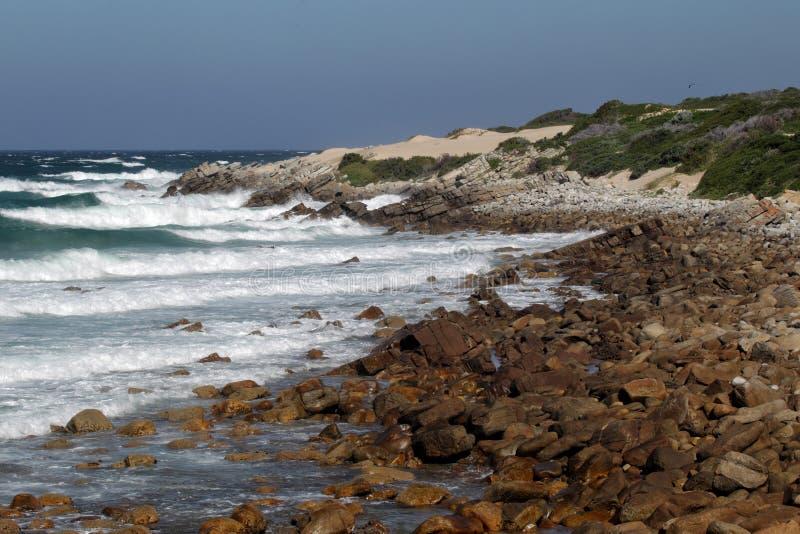 Kust på udde St Francis, Sydafrika royaltyfria foton