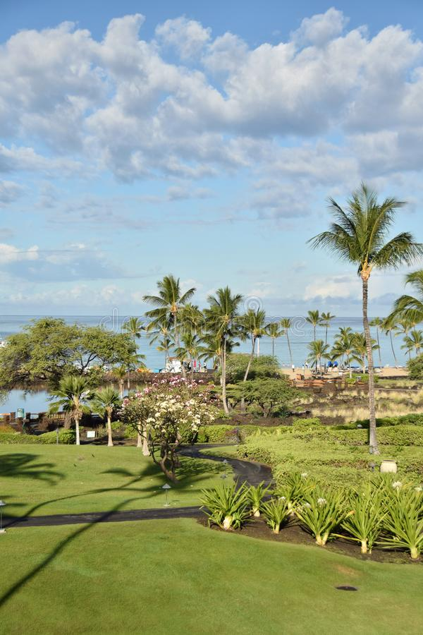 Kust- parkera i Hawaii royaltyfri fotografi