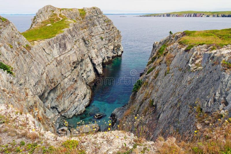 Kust- Rocks i Newfoundland royaltyfri foto
