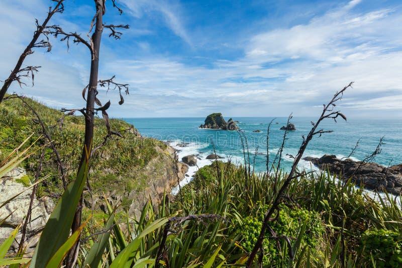 Kust- sikt i udde Foulwind, Nya Zeeland royaltyfri fotografi
