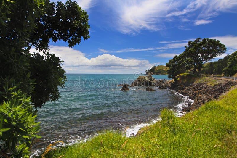 Kust- sikt Nya Zeeland royaltyfria foton