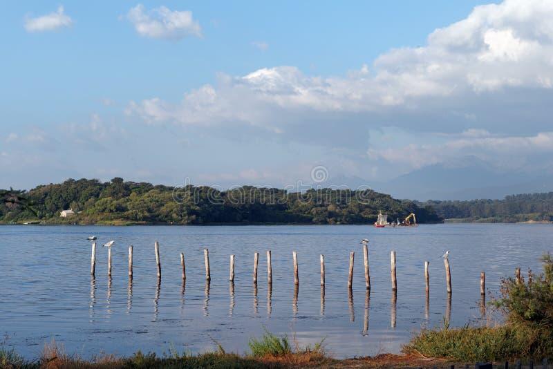 Kust- sjö i Korsika royaltyfri fotografi