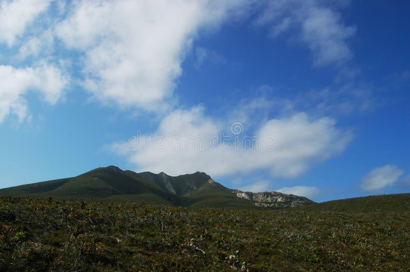 Kust- skura och blå himmel arkivfoto