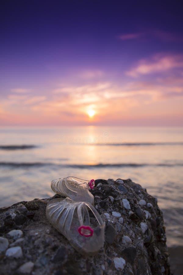 Kust- soluppgång fotografering för bildbyråer