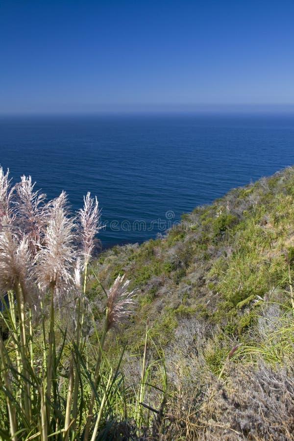 kust- Stillahavs- sikt för Kalifornien kust fotografering för bildbyråer