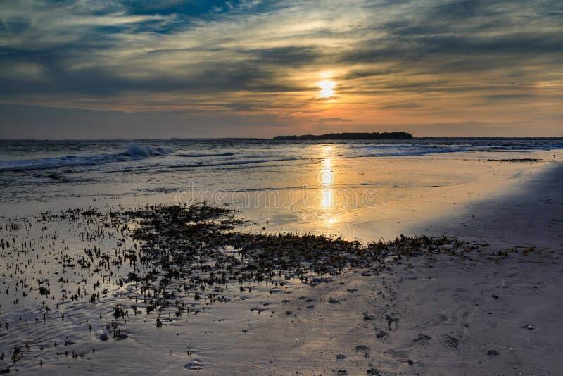 Kust- strand South Carolina för galenskap för bakgrundssolnedgånggyttjiga landremsor royaltyfria bilder