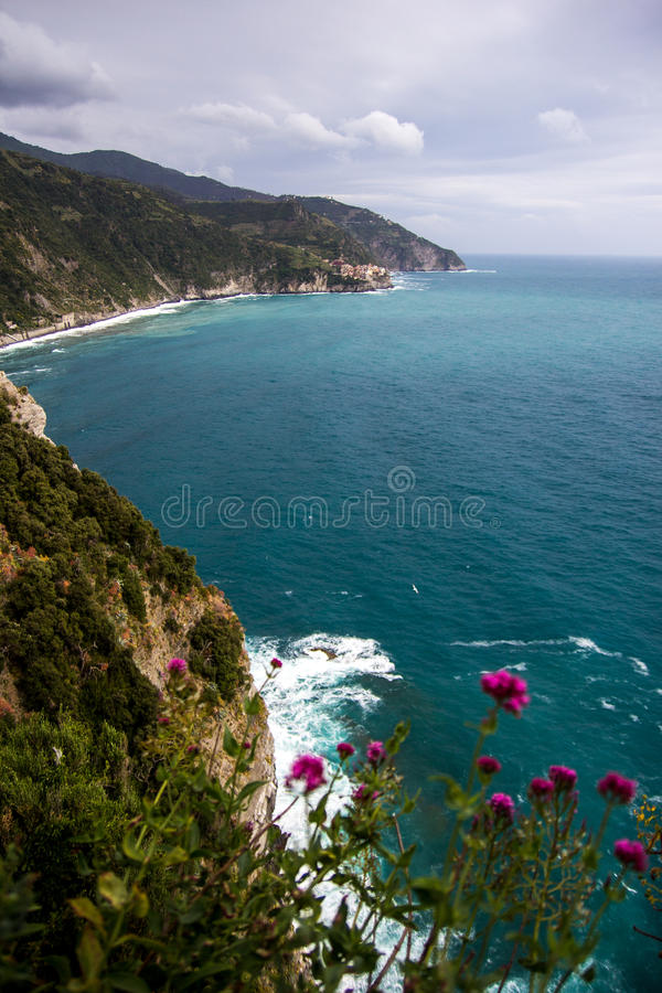 Kust van Cinque Terre stock afbeelding