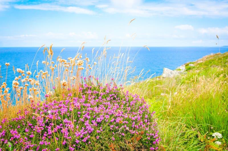 Kust van Cornwall in St Ives, Engeland stock fotografie