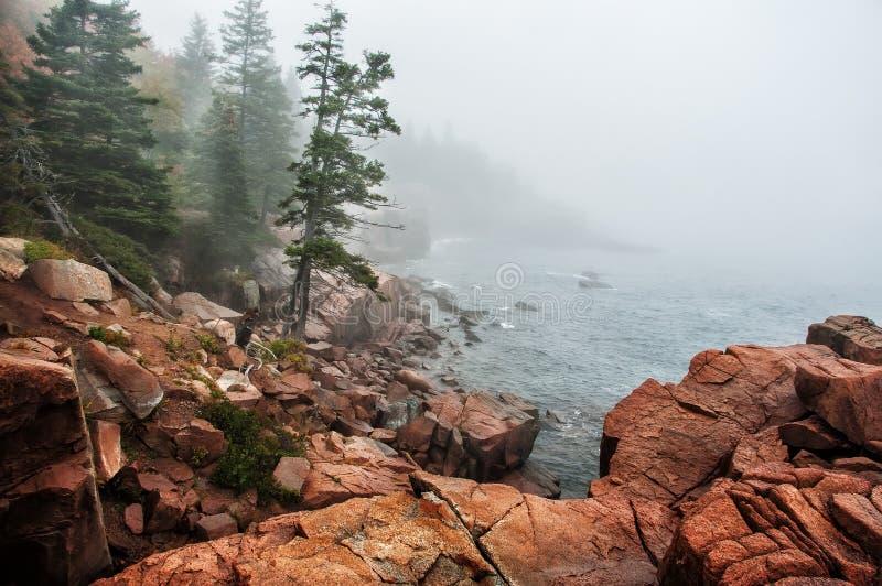 Kust van de Atlantische Oceaan in de mist stock afbeelding