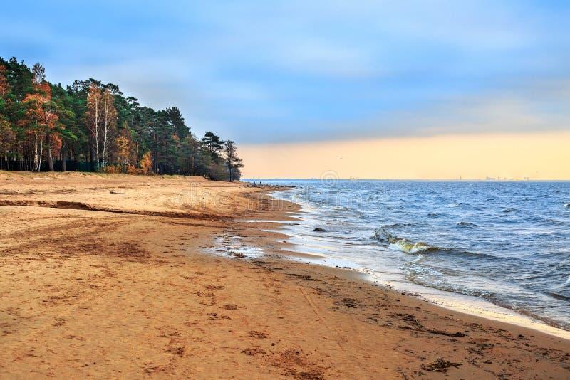 Kust van de Golf van Finland stock foto's