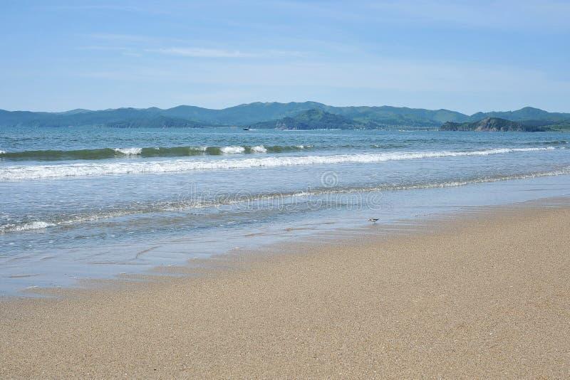 Kust van het overzees met mooi zand op een zonnige dag royalty-vrije stock afbeeldingen