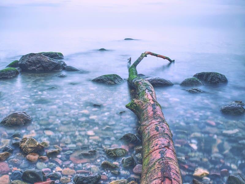 Kust van het overzees na een onweer Romantische atmosfeer kleurrijke zonsondergang op zee stock afbeeldingen