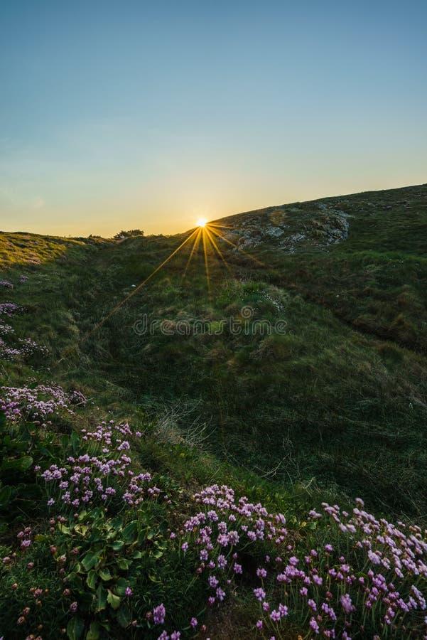 Kust- vandring under soluppgång i Quiberon i Brittany/Frankrike royaltyfri foto