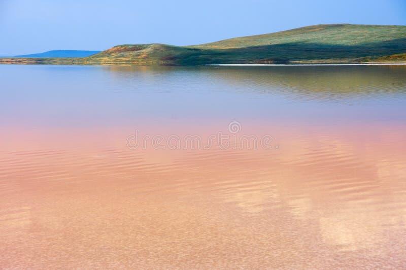 Kust zout meer Koyashskoye stock fotografie