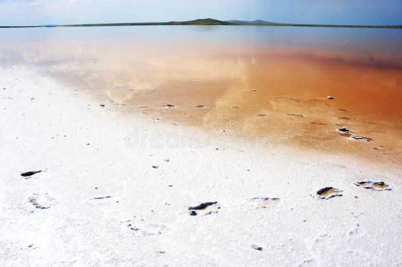 Kust zout meer Koyashskoye stock foto's