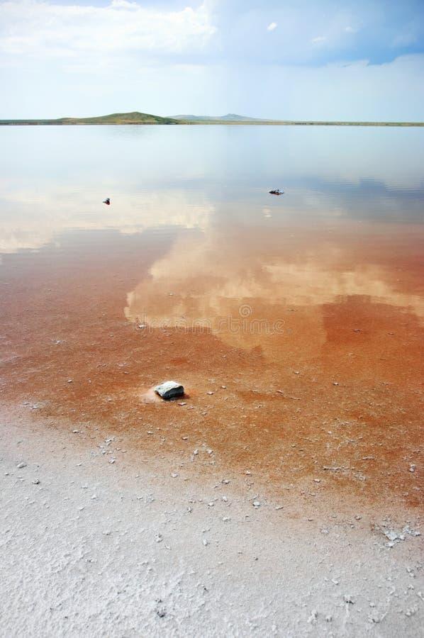 Kust zout meer Koyashskoye stock afbeelding