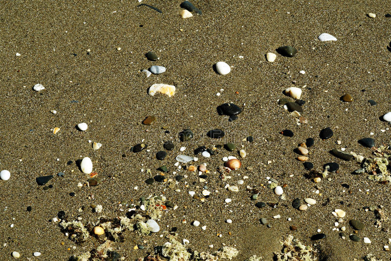 Kustbakgrund Sand beskjuter och stenmodellen royaltyfri bild