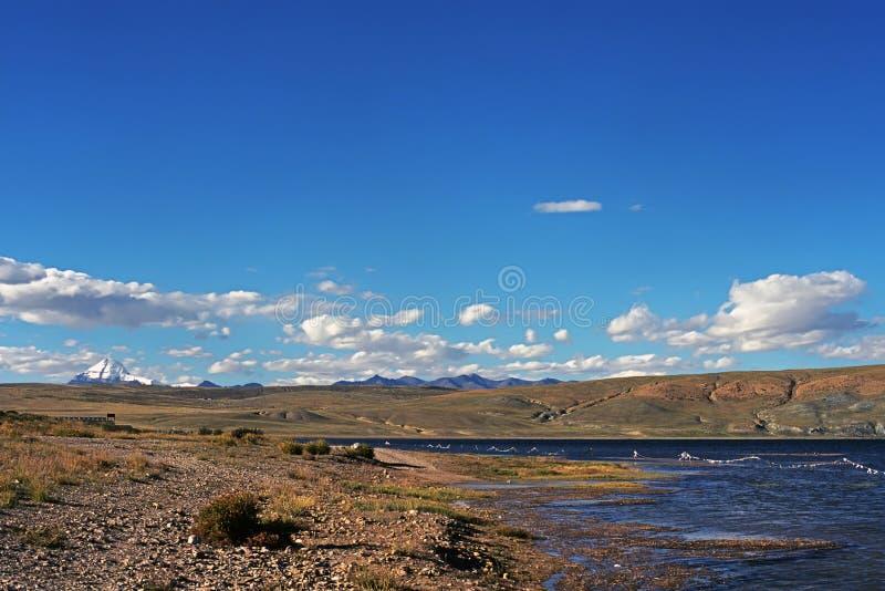 Kusten av den sakrala sjön Manasarovar i Tibet royaltyfri fotografi
