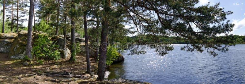 Kusten med vaggar och moussera den blåa svenska sjön arkivfoton