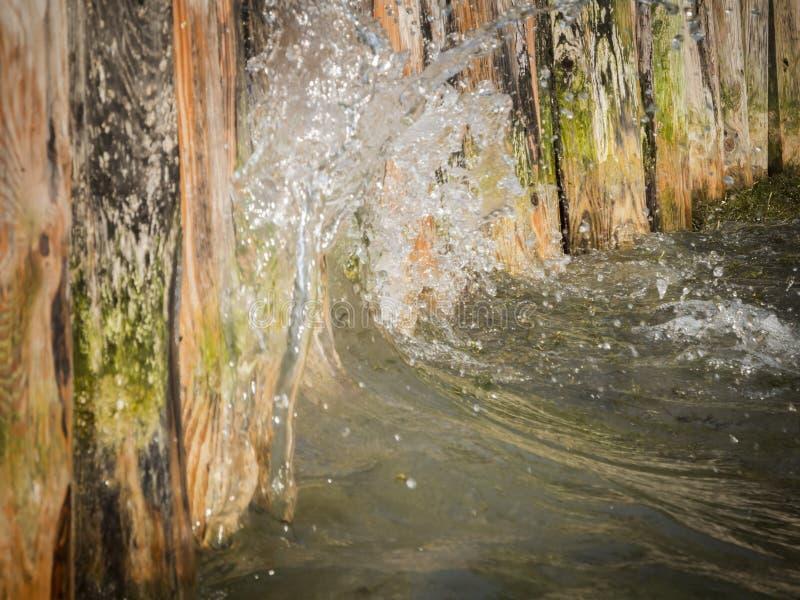 Kustgehechtheid met water royalty-vrije stock foto