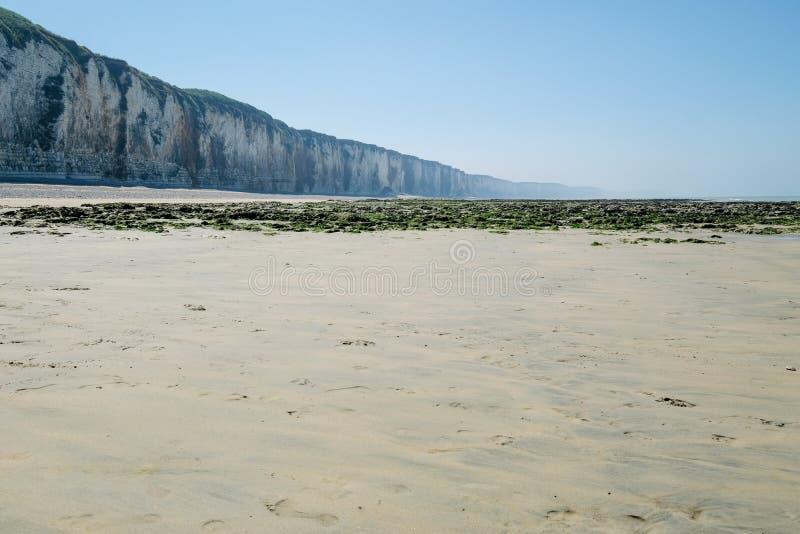 Kustlandschap in Normandië, Frankrijk in wazig licht met overzeese klippenstrand en kelp royalty-vrije stock foto