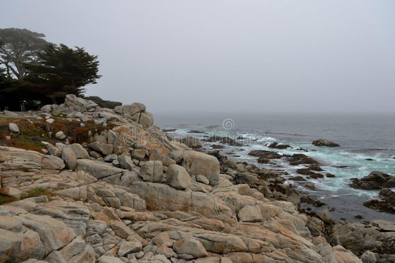 Kustlijn langs de 17 Mijlaandrijving in donkere dag californië royalty-vrije stock fotografie
