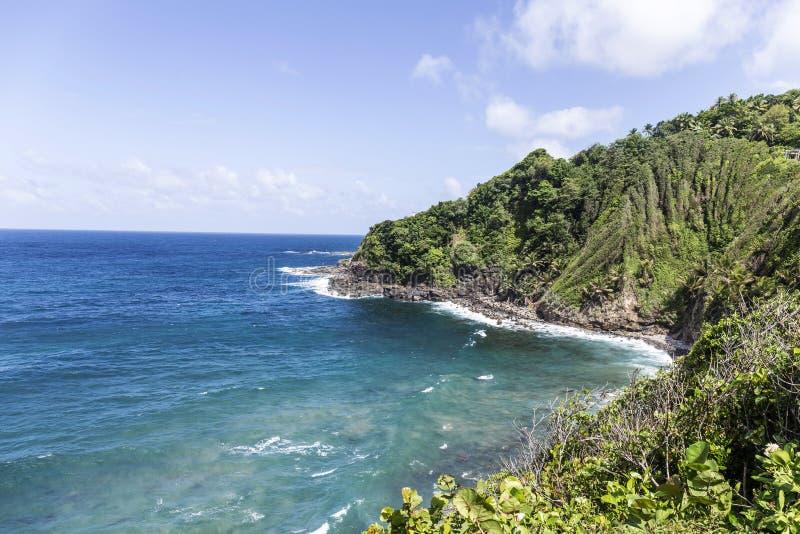 Kustlijn met regenwoud bij het Eiland Dominica stock afbeeldingen