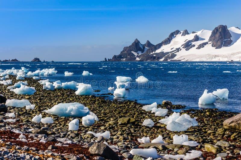 Kustlijn met stenen en ijs en koude nog wateren van de zuidpool stock foto's