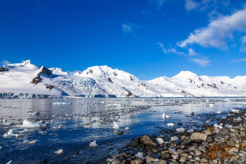 Kustlijn met stenen en koude nog wateren van antarctische overzeese vertraging stock foto