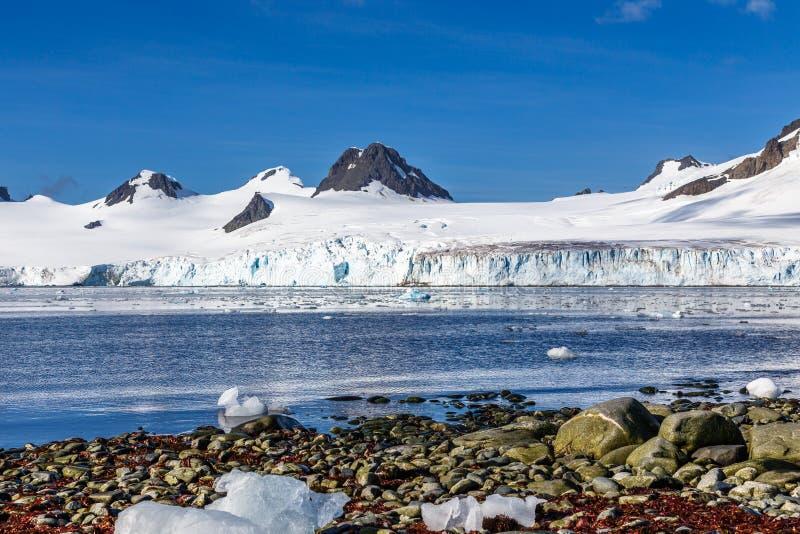 Kustlijn met stenen en koude nog wateren van antarctische overzeese vertraging royalty-vrije stock fotografie