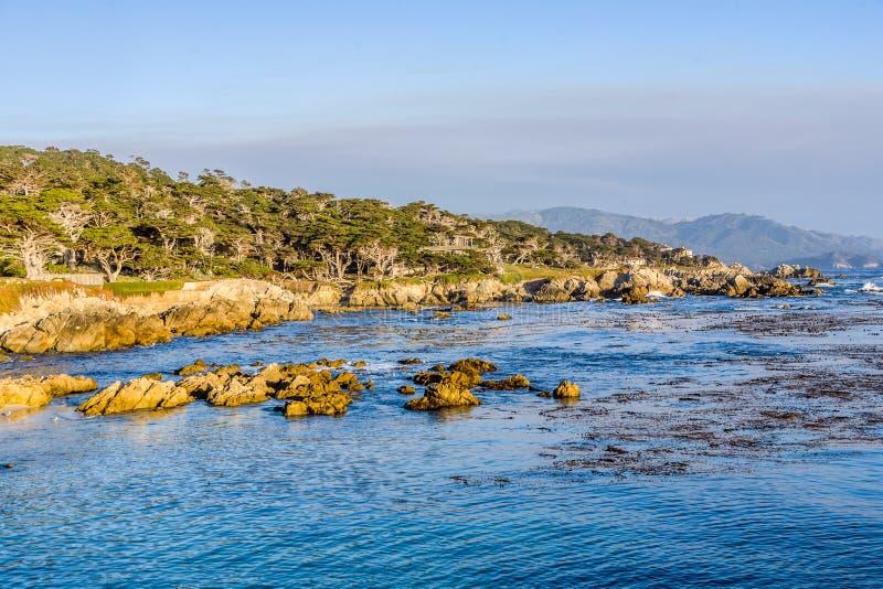 Kustlijn op Punt Lobos in Zonsondergang royalty-vrije stock fotografie