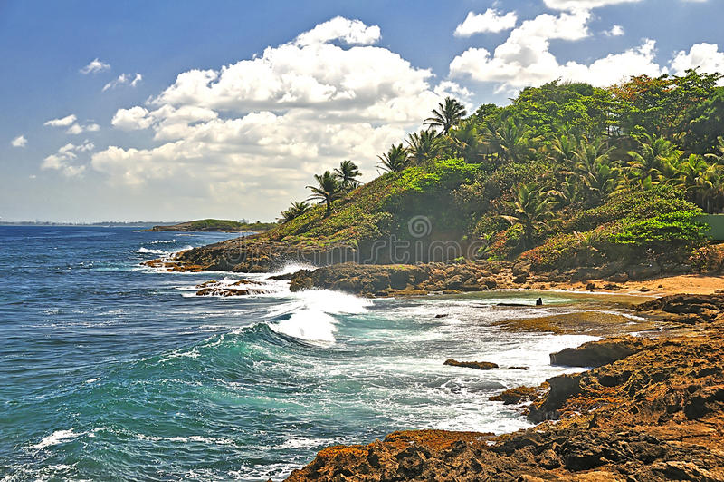 Kustlijn, Puerto Rico stock afbeelding