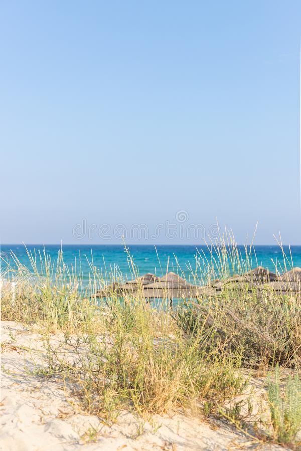 Kustlijn van Nissi-strand, Ayia Napa, Cyprus stock fotografie