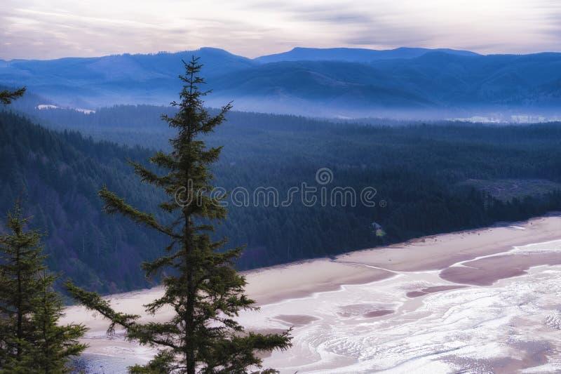 Kustlijnmening van de Kust van Oregon van het Kaapvooruitzicht stock foto's