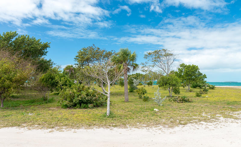 Kustlinje av fortet Zachary State Park i Key West, FL arkivbilder