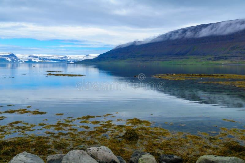 Kustlinje och landskap längs den Skotufjordur fjorden arkivbild