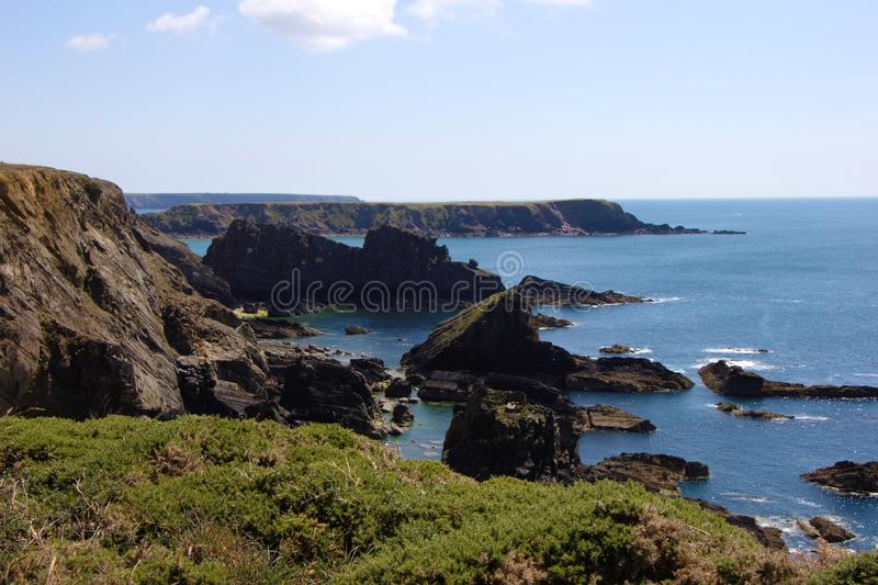 Kustlinje på svalas tillflyktsort Pembrokeshire Cornwall, UK royaltyfri bild