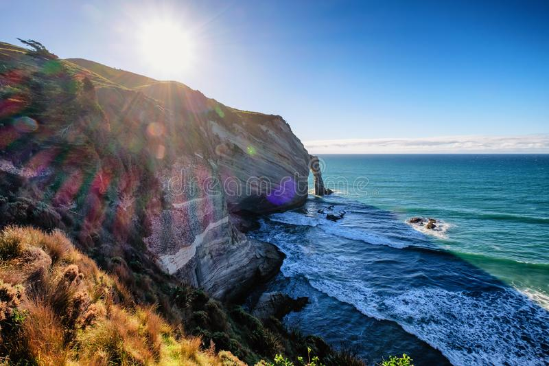 Kustlinje på uddeavskedet i Nya Zeeland fotografering för bildbyråer